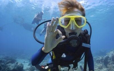 Wonderful diving