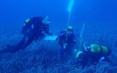 Projet de protection de l'environnement Avril 2021 avec Big Blue Diving